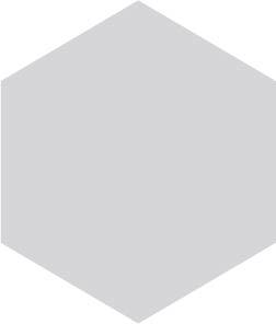 dumas-analysator-10