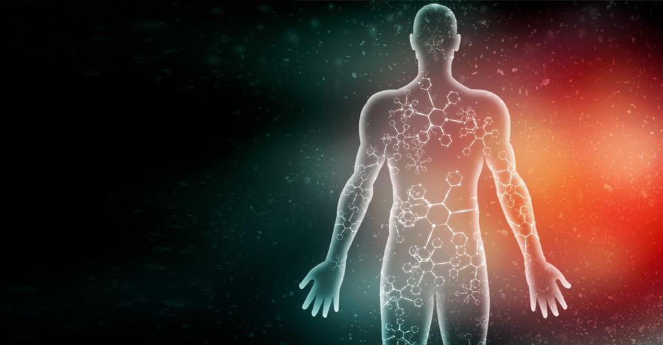leco_slider_metabolomics_biomarker