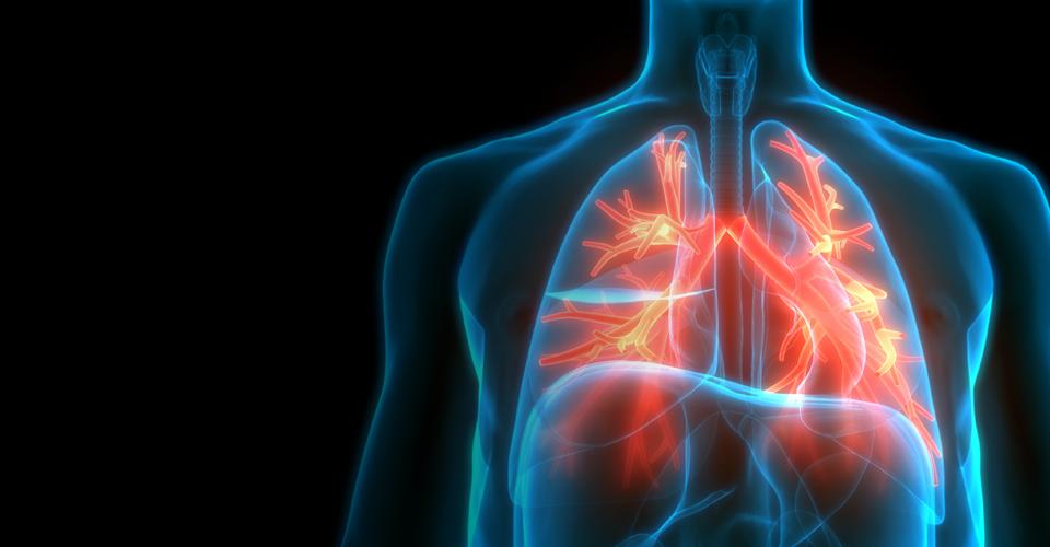leco_slider_metabolomics_breathomics