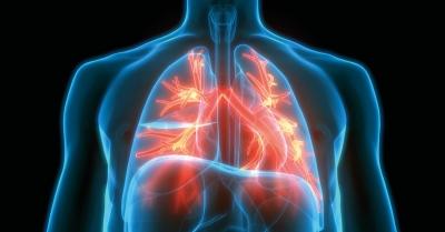 NA ŻĄDANIE | GC×GC-HR-TOFMS do nieukierunkowanych badań przesiewowych Breathomics