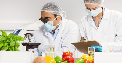 See What's in Your Food // Food Safety Webinar Series with LECO