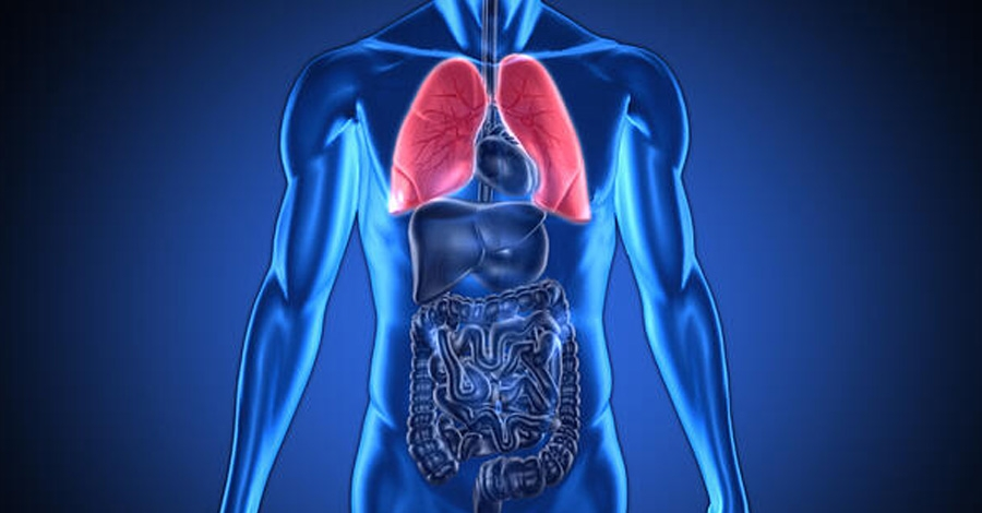 Медицинская диагностика состояния с использованием анализа дыхания и GC-GC-TOFMS: Оптимизация данных для назначения точного лечения